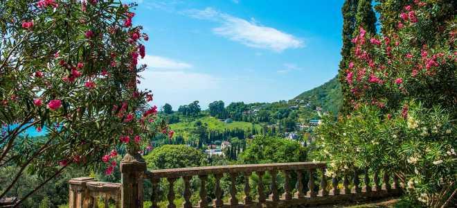 Нужен ли загранпаспорт и виза для поездки в Абхазию?