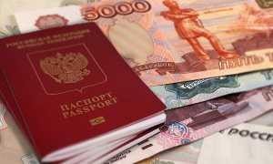 Сколько стоит оформление загранпаспорта в 2020 году, и как сэкономить на госпошлине?