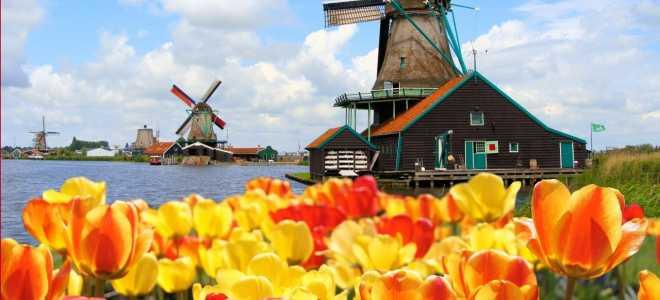 Как получить визу в Голландию (Нидерланды) для россиян в 2020 году?