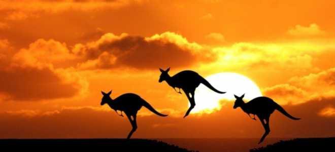 Как получить визу в Австралию в 2020 году?