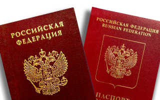Документы для оформления загранпаспорта старого и нового образца в 2020 году