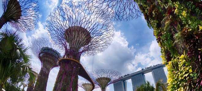 Нужна ли виза в Сингапур: безвизовый транзит или электронное разрешение