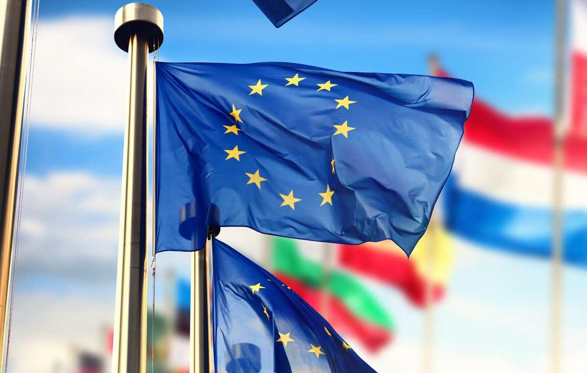 Флаг Евросоюза и флаги входящих в него стран