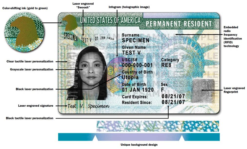 Как выглядит green card, ее реквизиты