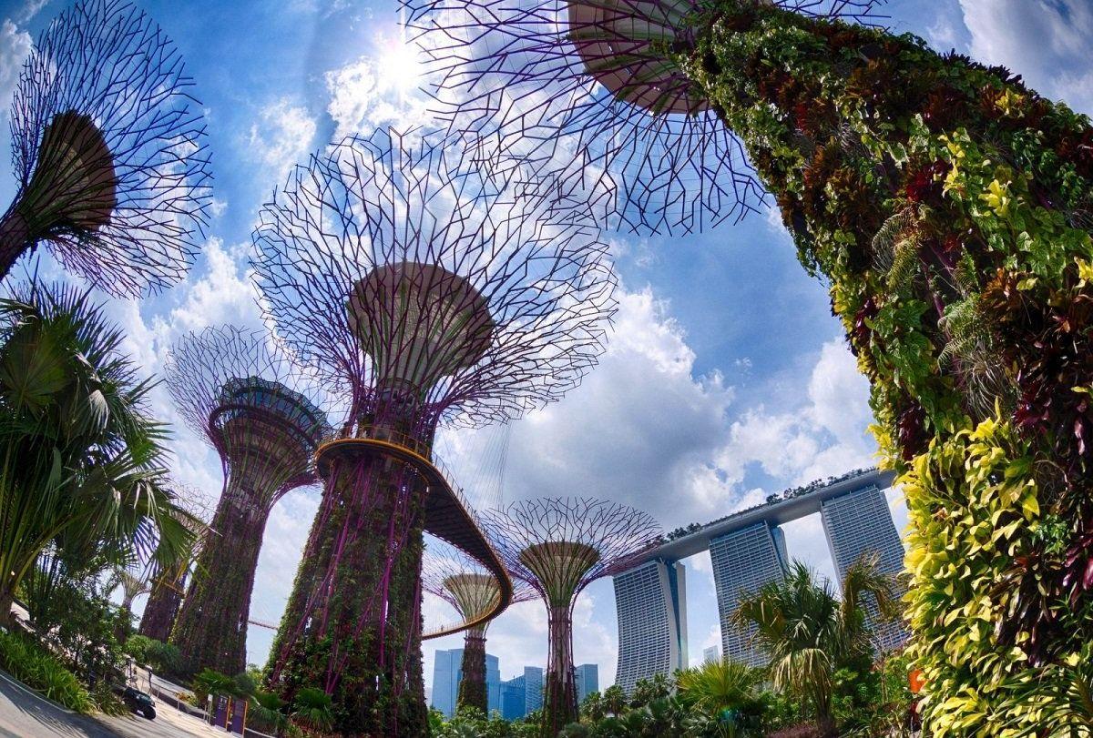 Вид на отель Marina Bay из ботанического сада