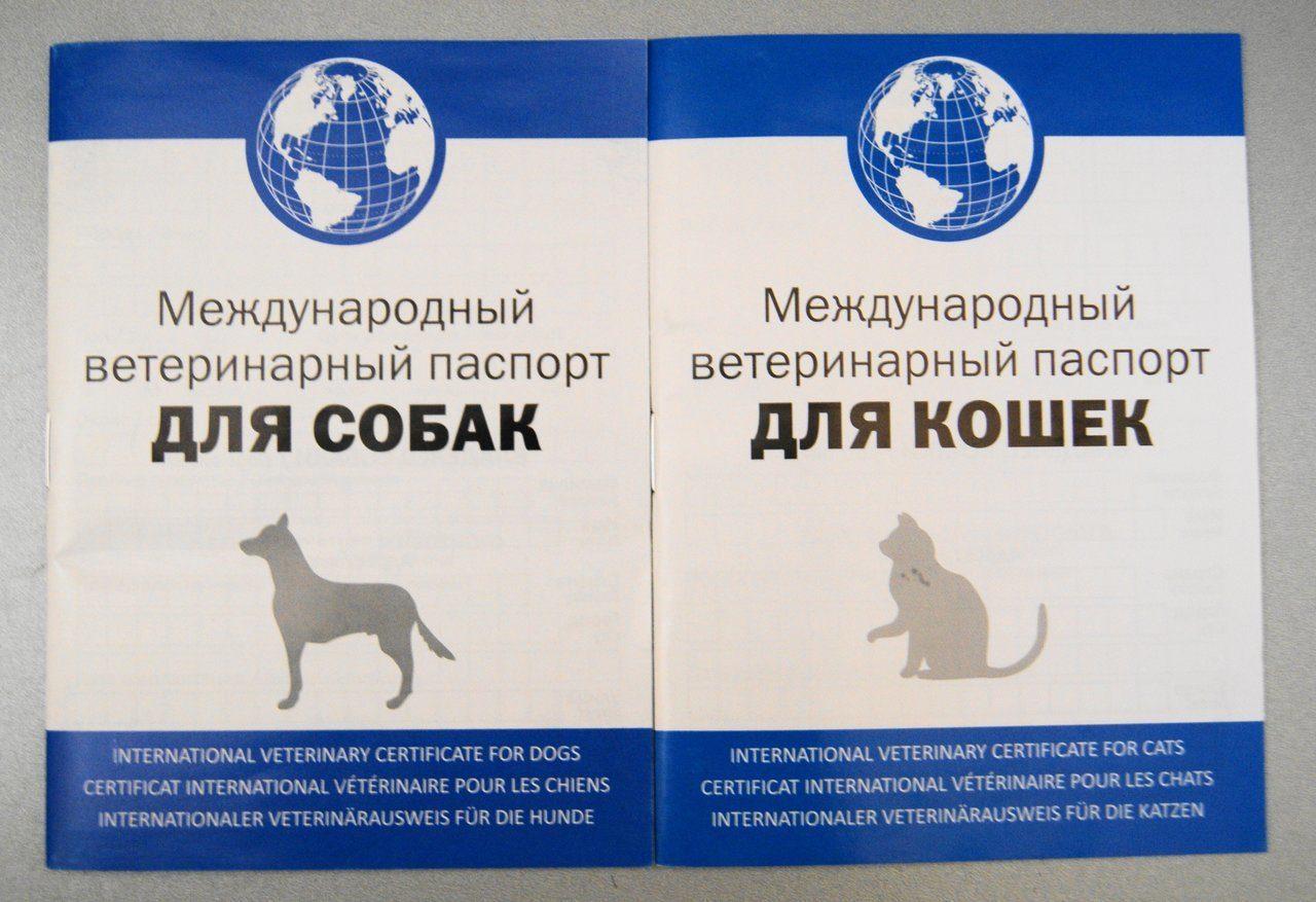 Ветеринарные паспорта международного образца